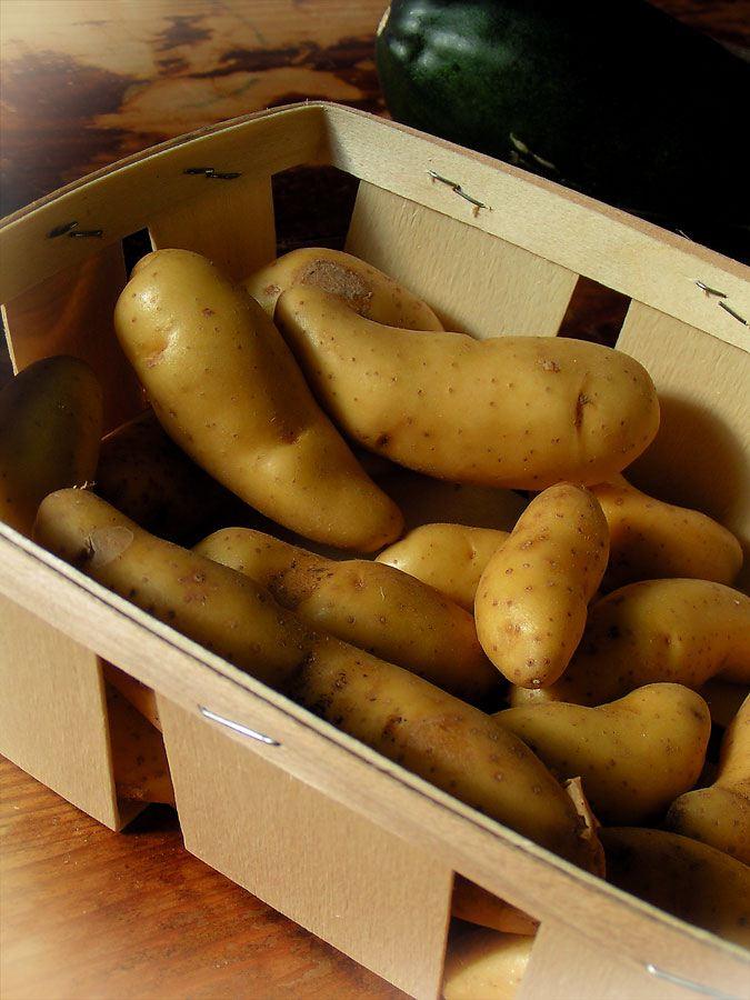 Potatoes - photo-gallery - 86/120
