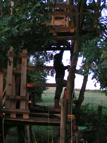 second step of tree house